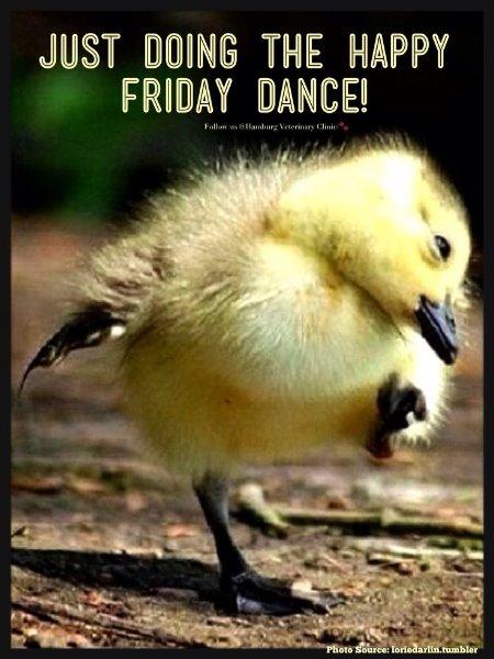 Fridaydance.jpg