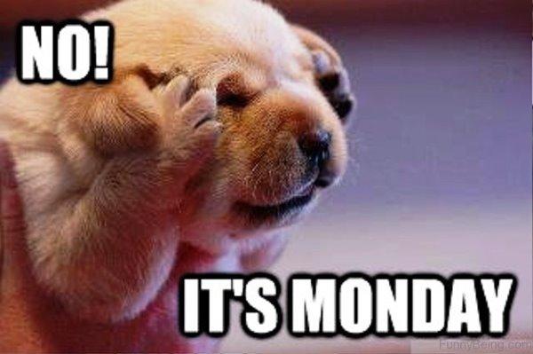 No-Its-Monday.jpg