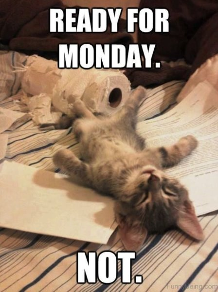 Ready-For-Monday-598x800.jpg
