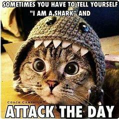 attackday.jpg