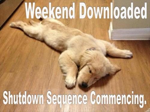 weekenddownload.jpg
