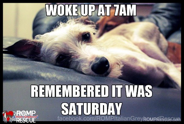 woke-up-at-7amrememberitwassaturday.jpg